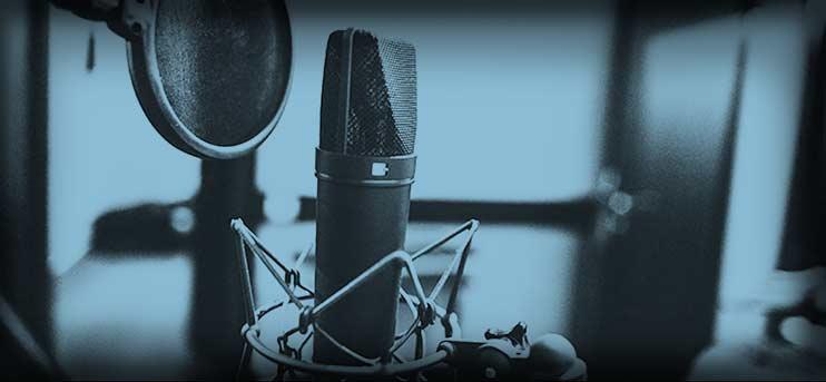 Дикторский голос