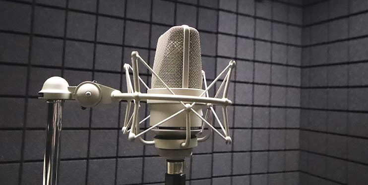 Микрофон Neumann TLM103 для записи голоса
