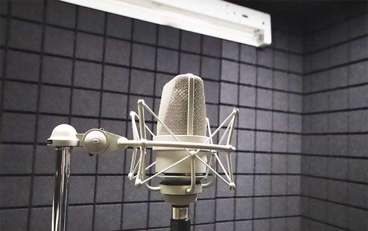 Записать вокал в студии Vivaldi можно на топовый микрофон Neumann TLM103