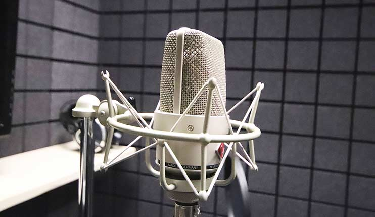 Микрофон Neumann TLM 103 для записи песен